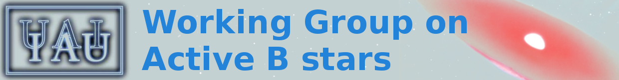 Active B Star Working Group